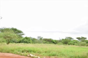 The Water Project: Nzoila Secondary School -  Playing Field