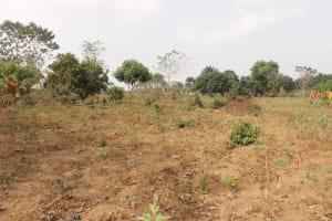 The Water Project: Waysaya Community, #1 Reverend Samuel Street -  Landscape