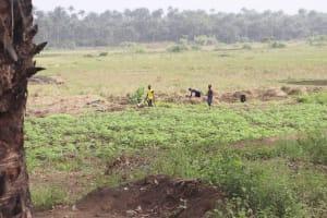 The Water Project: Waysaya Community, #1 Reverend Samuel Street -  Gardening