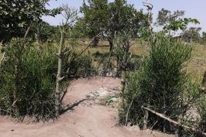 The Water Project: Rwensororo Community -  Bathing Shelter