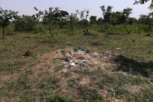 The Water Project: Rwensororo Community -  Garbage Pit