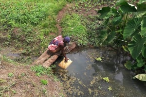 The Water Project: Bulima-Kahembe Community -  Filling Up At Open Source