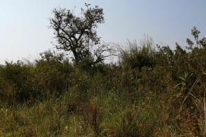 The Water Project: Byerima Community -  Landscape