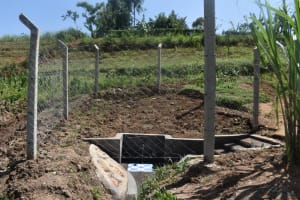 The Water Project: Shihome Community, Oloo Njinuli Spring -  Protected Spring