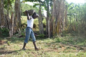 The Water Project: Mabanga Community, Ashuma Spring -  Carrying Materials To The Spring