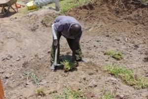 The Water Project: Elwichi Community, Mulunda Spring -  Grass Planting