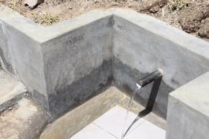 The Water Project: Elwichi Community, Mulunda Spring -  Water Flowing