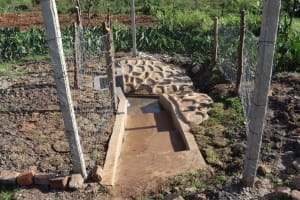 The Water Project: Isanjiro Community, Musambai Spring -  Entrance To The Protected Spring