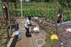 The Water Project: Isanjiro Community, Musambai Spring -  Final Site Clearance