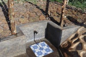 The Water Project: Isanjiro Community, Musambai Spring -  Water Flowing