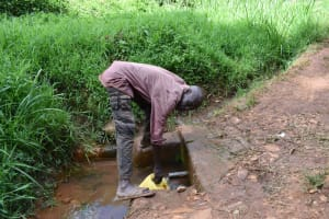 The Water Project: Bumira Community, Savai Spring -  John Collecting Water