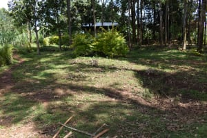 The Water Project: Bumira Community, Savai Spring -  Home Compound