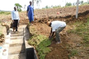 The Water Project: Mukoko Community, Zebedayo Mutsotsi Spring -  Zebedayo Mutsotsi Planting Grass