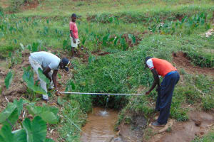 The Water Project: Shihome Community, Oloo Njinuli Spring -  Foundation Measurements