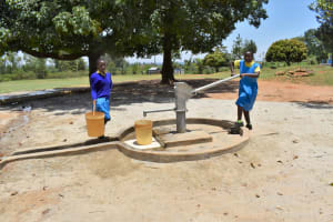 The Water Project: Ibokolo Primary School -  Students Fetching Water