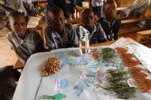 The Water Project: St. Martin's Primary School -  Grade Four Having A Practical Session On How To Make Sources Of Rain