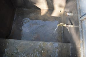 The Water Project: St. Martin's Primary School -  Water Flowing