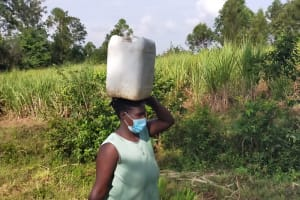 The Water Project: Mabanga Community, Ashuma Spring -  Water From Ashuma Spring En Route To Use