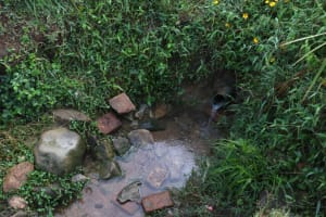The Water Project: Khunyiri Community, Edward Spring -  Unprotected Spring