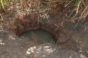 The Water Project: Kamasondo, Robay Village, Next to Mosque -  Open Water Source