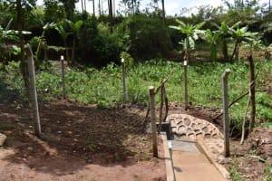 The Water Project: Shamoni Community, Shatuma Spring -  Entrance To The Spring