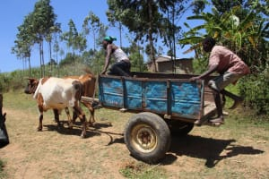 The Water Project: Mayuge Community, Ucheka Spring -  Community Members Delivering Materials By Cart