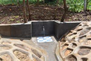 The Water Project: Shamoni Community, Shatuma Spring -  Flowing Water