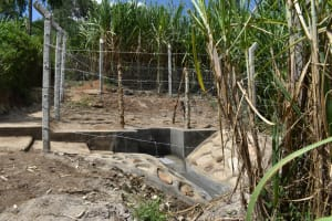 The Water Project: Bukhakunga Community, Maikuva Spring -  Completed Spring