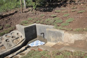 The Water Project: Litinye Community, Vuyanzi Spring -  Water Flowing At The Completed Spring
