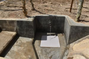 The Water Project: Bukhakunga Community, Maikuva Spring -  Free Flowing Water