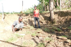 The Water Project: Mwitwa Community, Matiang'i Spring -  Planting Grass