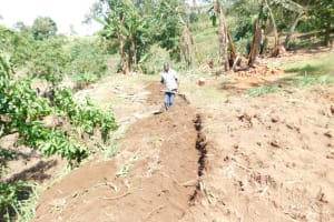 The Water Project: Khaunga A Community, Murutu Spring -  Digging Diversion Channels