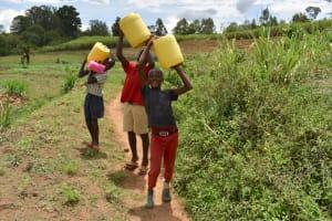 The Water Project: Nangurunya Community, Robert Musali Spring -  Boys Carying Water