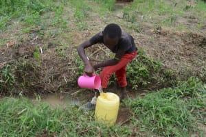 The Water Project: Nangurunya Community, Robert Musali Spring -  Boy Fetching Water