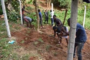 The Water Project: Shamoni Community, Shatuma Spring -  Grass Planting