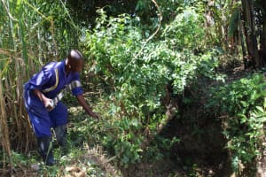 The Water Project: Mayuge Community, Ucheka Spring -  Site Clearance