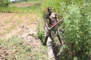 The Water Project: Mayuge Community, Ucheka Spring -  Opening The Drainage Channel
