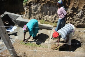 The Water Project: Mayuge Community, Ucheka Spring -  Grass Planting