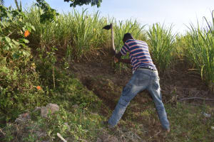 The Water Project: Makale Community, Kwalukhayiro Spring -  Digging The Cut Off Drainage