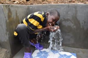 The Water Project: Wepika Community, Musa Mmasi Shikwe Spring -  Joy That Comes With Clean Water