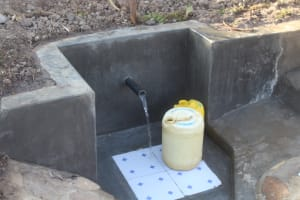 The Water Project: Mwitwa Community, Matiang'i Spring -  Clean Water Flowing