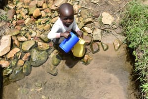 The Water Project: Ematetie Community, Amasetse Spring -  A Child Collecting Water