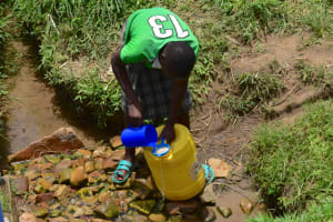 The Water Project: Ematetie Community, Amasetse Spring -  Collecting And Sieving Water