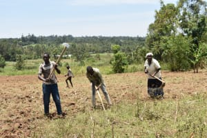 The Water Project: Ematetie Community, Amasetse Spring -  Community Members Farming
