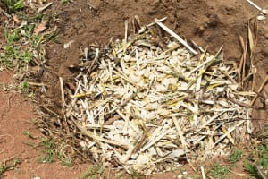 The Water Project: Ematetie Community, Amasetse Spring -  Garbage Pit