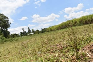 The Water Project: Ematetie Community, Amasetse Spring -  Landscape