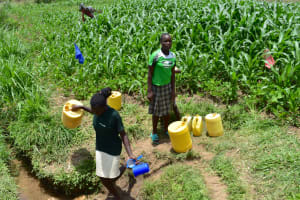 The Water Project: Ematetie Community, Amasetse Spring -  People Collecting Water