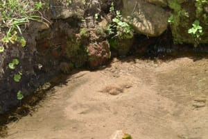 The Water Project: Ematetie Community, Amasetse Spring -  Unprotected Water Source