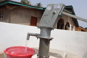 The Water Project: Lungi, Yongoroo, #7 Kamara Taylor Street -  Clean Water Flowing