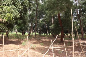 The Water Project: Shepherd Foundation, New Apostolic Church and Primary School -  School Surronding Area